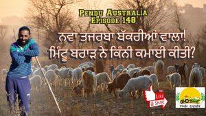 Episode 148 | Pendu Australia | Goat Farming