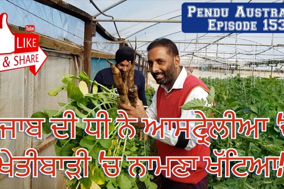 Episode 153 | Pendu Australia | A successful Farmer ~ Daughter of Punjab
