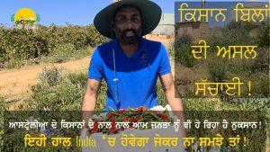 Episode 181   Pendu Australia   Effect of Farmers Law in Australia